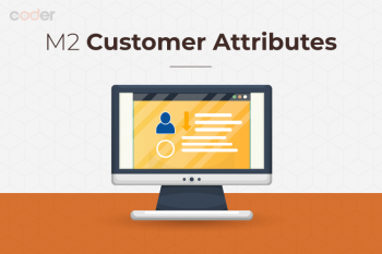 Magento 2 customer attributes main img