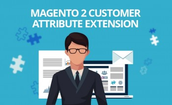 Magento 2 Marketplace Customer Attribute