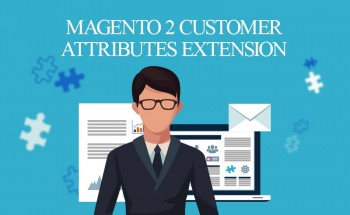 Magento 2 Customer Attributes Extension