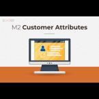 Magento 2 customer attributes main img