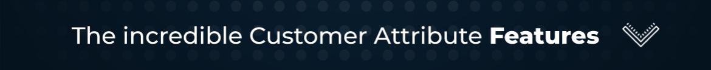 Magento 2 Customer Attribute Feature