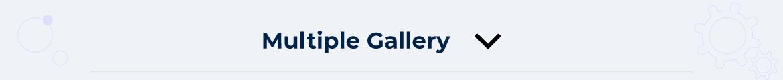 Magento 2 multi gallery