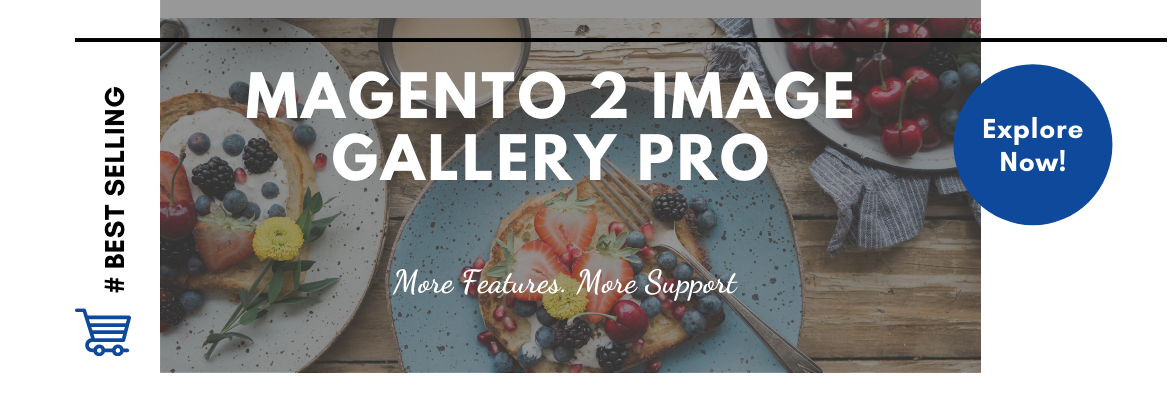 Best Magento 2 Image Gallery Extension Pro