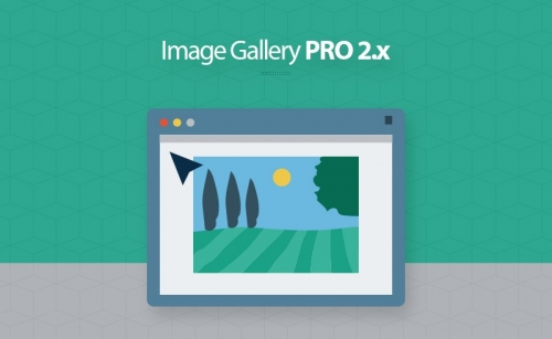 Magento 2 Image Gallery Extension