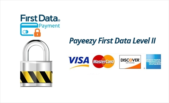 Payeezy First Data Level II Support