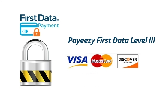 Payeezy First Data Level III Support