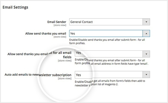 Auto add email to newsletter subscription list
