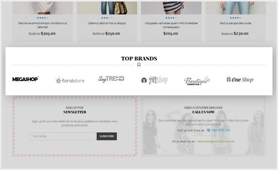 Show Brand Logo in Slider/ owl carousel