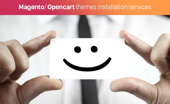 Magento/ Opencart themes installation services