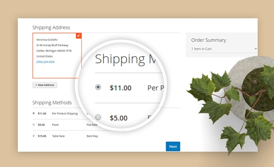 Coupon Condition: Get coupons automatically