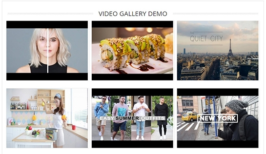 Magento 2 Image Gallery PRO Extension - Video Gallery