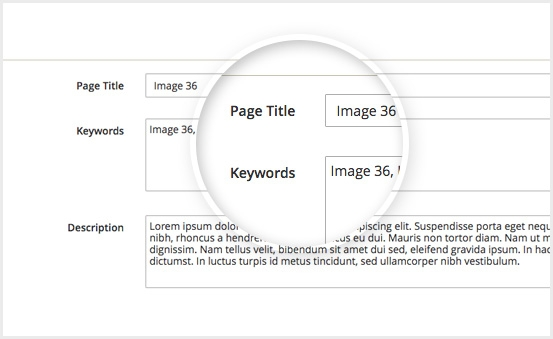 Magento 2 Image Gallery Extension - Specify metadata for images and pictures