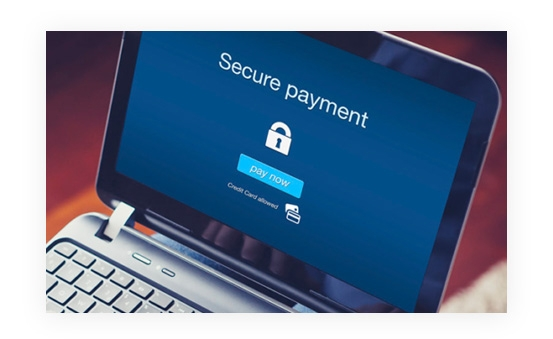 Safe, Secure and Reliable Payment Platform