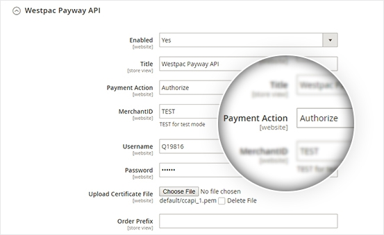 Support payment authorize mode