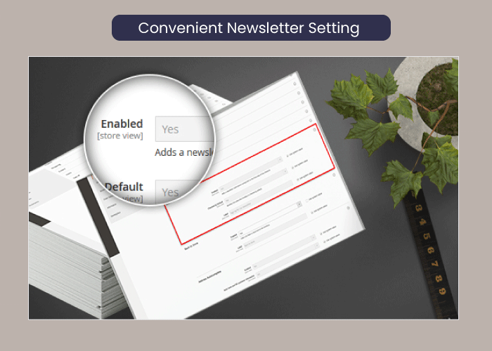 Magento 2 one step checkout Convenient Newsletter Setting