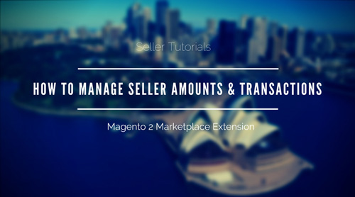 How-To-Manage-Seller-Amounts-Transactions