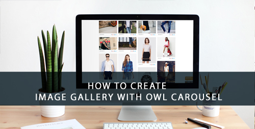 create-gallery-with-owl-carousel
