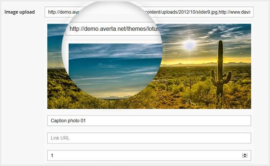 Embed Multiple Images URLs