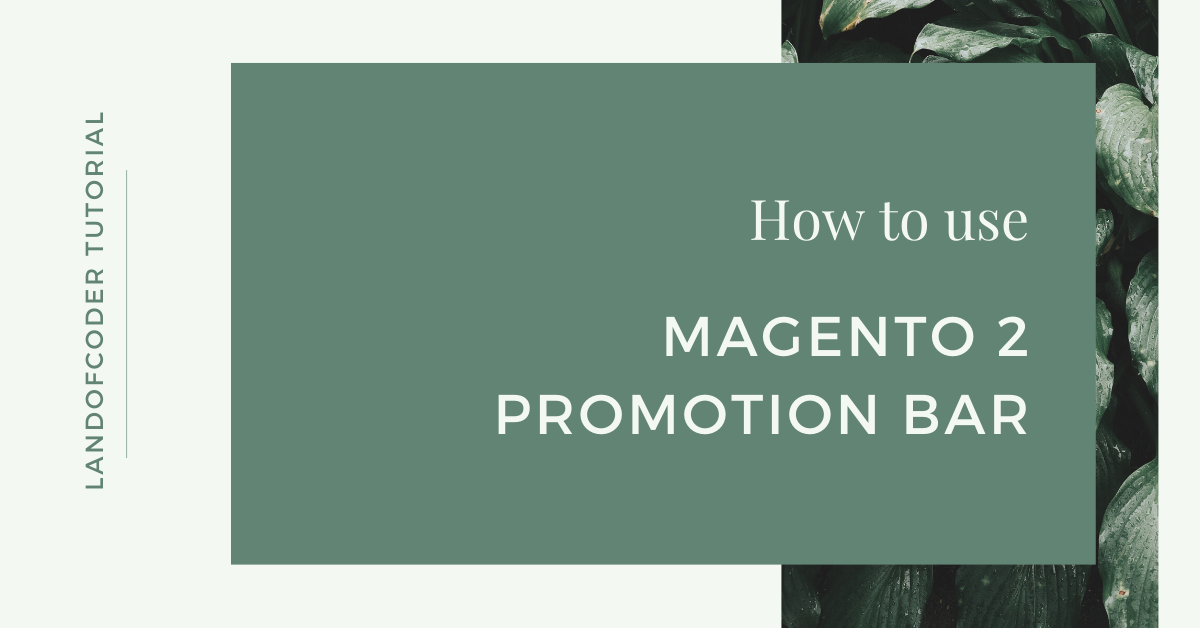 How To Use Magento 2 Promotion Bar